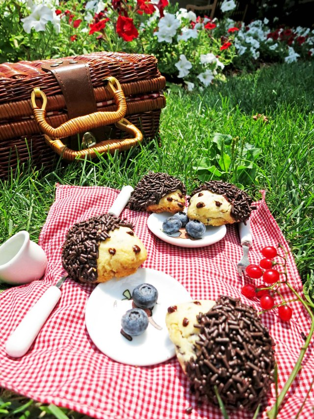 hedgehog picnic