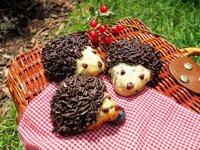 hedgehogs basket