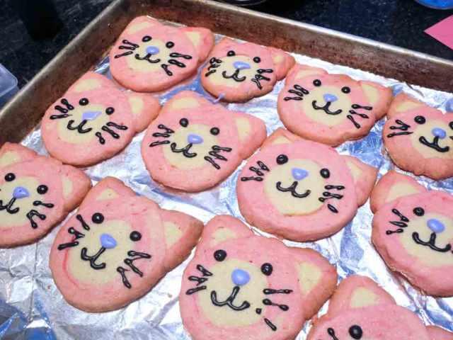 kitty-cookies-iced