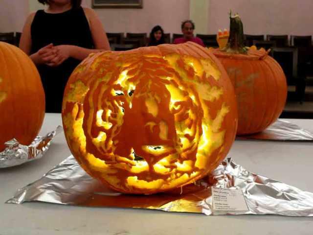 tiger-pumpkin
