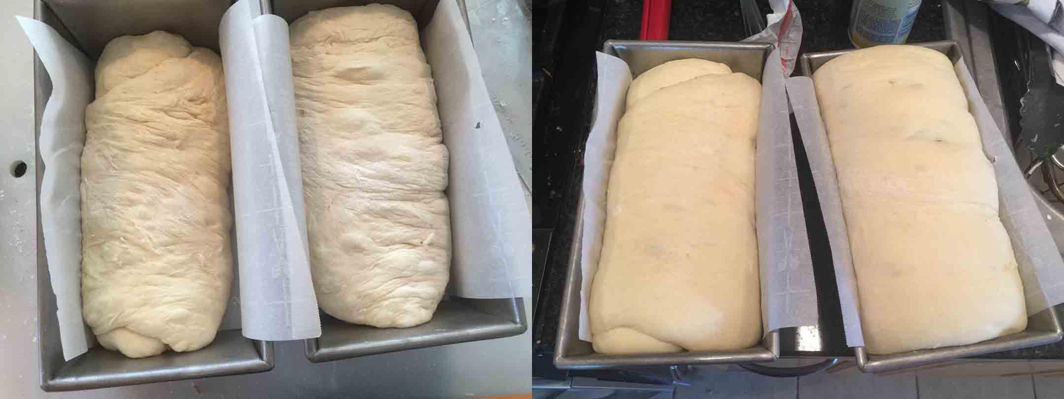 white-bread-rise