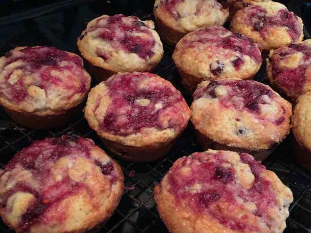 juneberry-muffins-warm